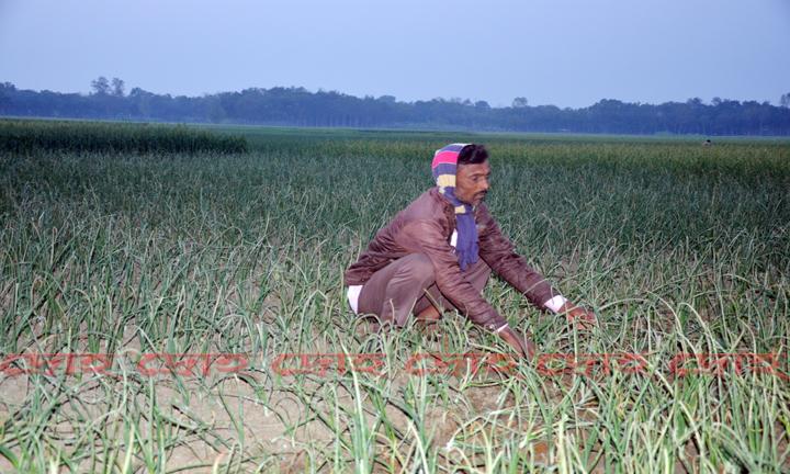 Farmar-droho-16-p4